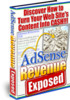 Thumbnail Adsence Revenue Exposed